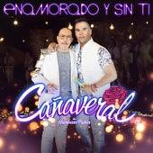 Enamorado Y Sin Ti by Grupo Cañaveral De Humberto Pabón