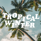 Tropical Winter de Pala