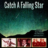 Catch A Falling Star de Various Artists
