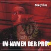 Im Namen der Pro. (2020 Remix) by DeeEmZee