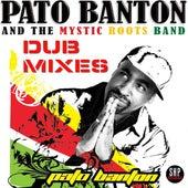 Positive Vibrations Dub Mixes by Pato Banton