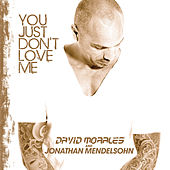 You Just Don't Love Me by David Morales