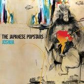 Joshua von The Japanese Popstars