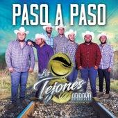 Paso A Paso by Los Tejones Del Arroyo