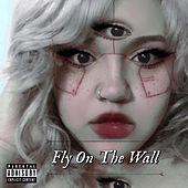 Fly On The Wall (Remix) de Acosta