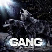 Gang von Amigo