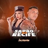 Sustenta (feat. Mc Gw) de MC Sapão do Recife