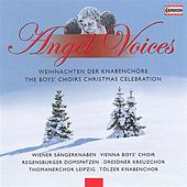 Angel Voices: The Boys' Choirs Christmas Celebration by Various Artists