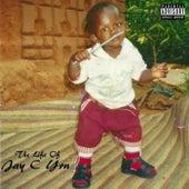 The Life of Jay C Yrn by Jay C Yrn