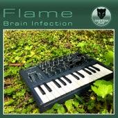 Brain Infection de Flame