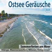 Ostsee Geräusche: Sommerferien am Meer, Klänge, Meeresrauschen, Möwen, Entspannen von Torsten Abrolat