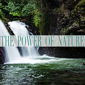 The Power of Nature by Nature Sounds (1)
