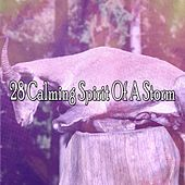 28 Calming Spirit of a Storm by Rain Sounds and White Noise