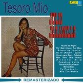 Tesoro Mío by Julio Jaramillo