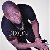 Tshororo de Dixon