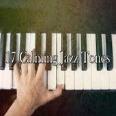 17 Calming Jazz Tones de Bossanova