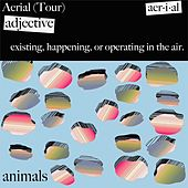 Aerial Tour von The Animals