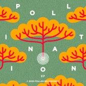 Pollination EP de Hem
