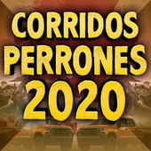 Corridos Perrones 2020 by Various Artists