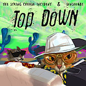 Top Down - Single by The String Cheese Incident
