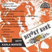 Divoký koně (Hity Karla Mareše) by Various Artists