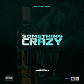 SOMETHING CRAZY by Elevated Level