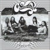 Rebirth by Consortium