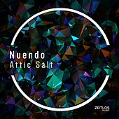 Attic Salt by Nuendo