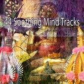 44 Soothing Mind Tracks von Yoga