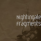Fragments by Nightingale