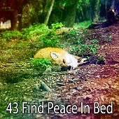 43 Find Peace in Bed by Baby Lullaby (1)