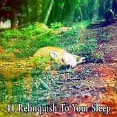 41 Relinquish to Your Sle - EP by Ocean Waves For Sleep (1)