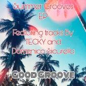 Summer Grooves EP de Tina Jackson