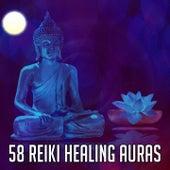 58 Reiki Healing Auras de White Noise Research (1)