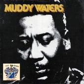Muddy Waters 1 de Muddy Waters