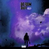 Big Room Diary, Vol. 9 de Various Artists