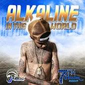In This World by Alkaline