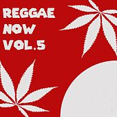 Reggae Now , Vol. 5 by Various Artists
