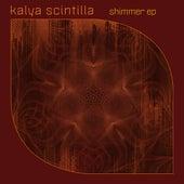 Shimmer by Kalya Scintilla