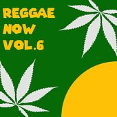 Reggae Now , Vol. 6 von Various Artists