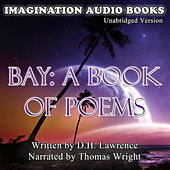 Bay: A Book Of Poems de Imagination Audio Books