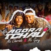 Agora é Tchau (feat. DJ Nando) de MC Charada