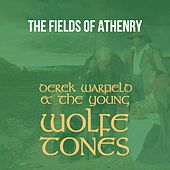 The Fields of Athenry von Derek Warfield