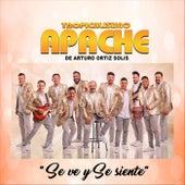 Se Ve y Se Siente by Tropicalisimo Apache de Arturo Ortiz Solis