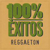 100% Éxitos - Reggaeton di Various Artists
