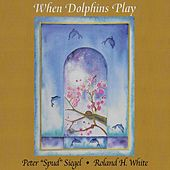 When Dolphins Play by Peter Siegel