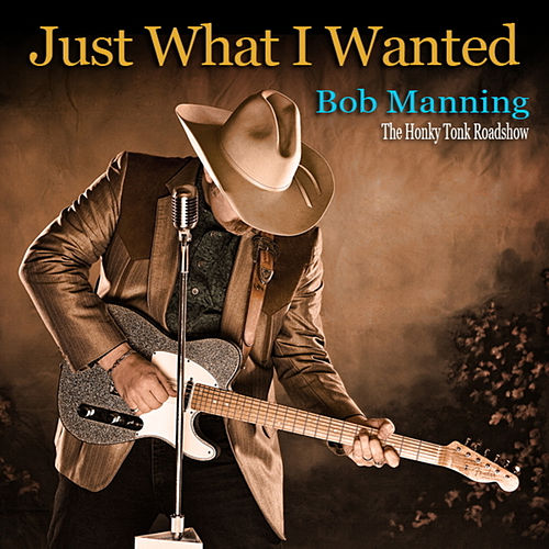 Just What I Wanted by Bob Manning