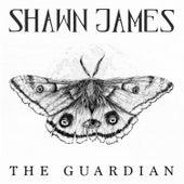 The Guardian (Ellie's Song) de Shawn James