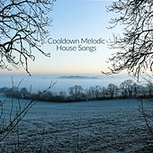 Cooldown Melodic House Songs by Various Artists