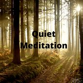 Quiet Meditation de Rainmakers